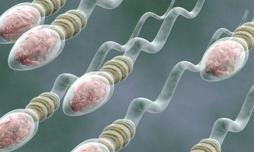 pierderea în greutate creșteți numărul spermei pierderea de grăsimi pentru revizuirile idioților