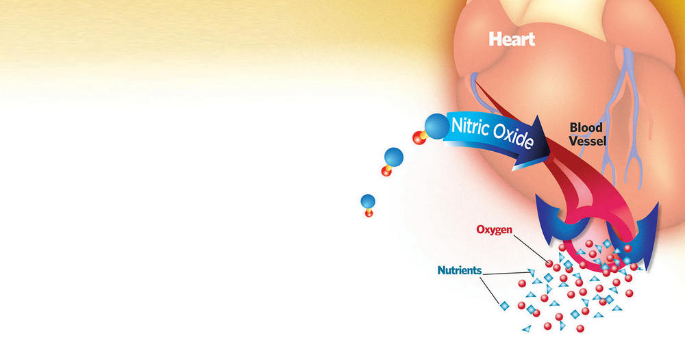 Cardiovascular Benefits of Nitric Oxide
